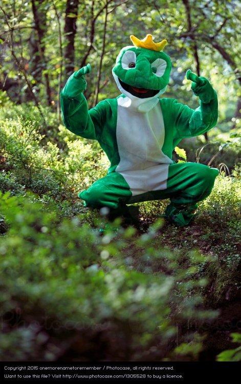 1305528-ghetto-frog-natur-gruen-wald-kunst-aesthetisch-frosch-krone-photocase-stock-foto-gross.jpeg