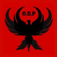 Order of the Dark Phoenix