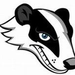 Old Badger