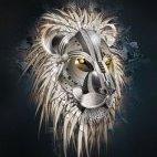 The Black Lions