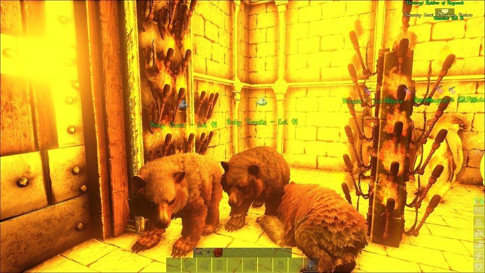 Dying baby bears.jpg