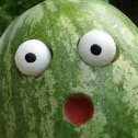 Softmelons