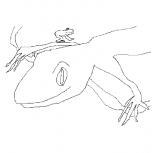 geckofrog