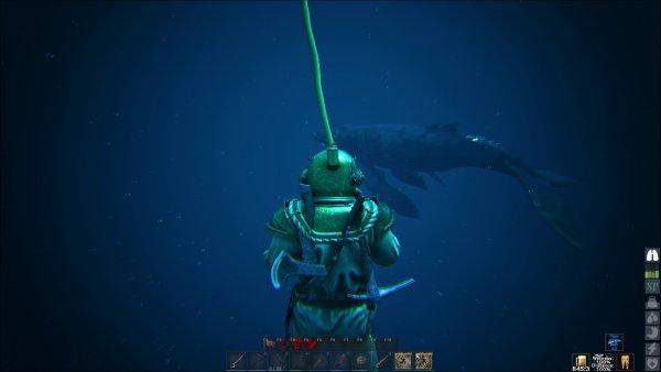 meetingwithwhale.jpg