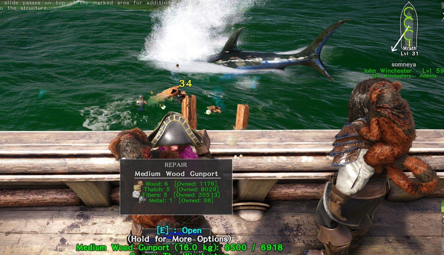 shark_buffet_.jpg
