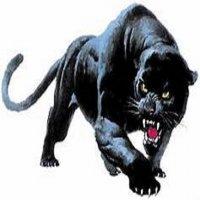 The Black Panther Clan