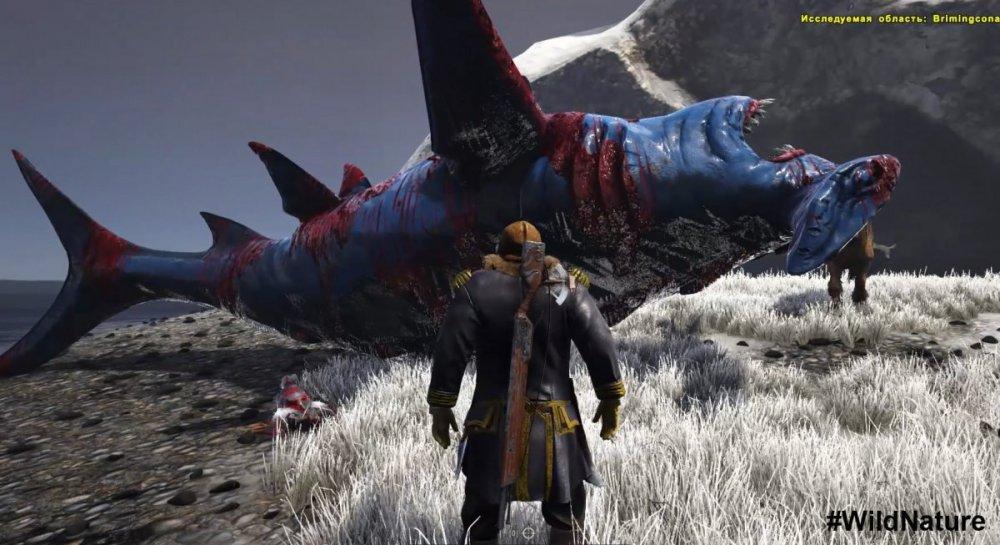 pomeh Huge_shark.jpg
